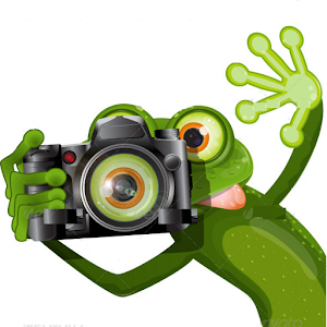 kikker fotograaf.png