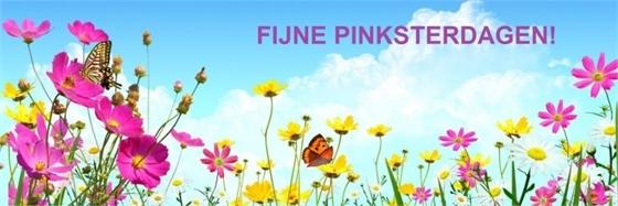 pinkster_2020.jpg