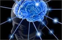 prikkel-het-brein.jpg